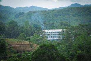 Thalgaswella Estate