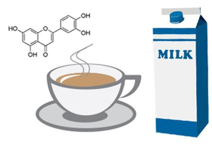 Als ik melk aan mijn thee toevoeg, vermindert dat dan de gezondheidsvoordelen van mijn thee?