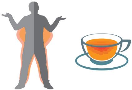 Kan groene thee gewichtsverlies bevorderen?