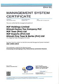 ISO 14001:2015 standaard voor milieumanagementsysteem