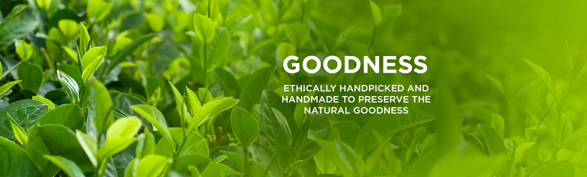 Ethically Handpicked And Handmade